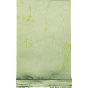 100g蒸着平袋 緑