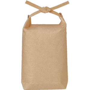 紙バンド付ポリクラフト袋105×25×185