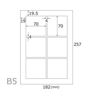 レーザー専用光沢シール(6面×20シート)B5